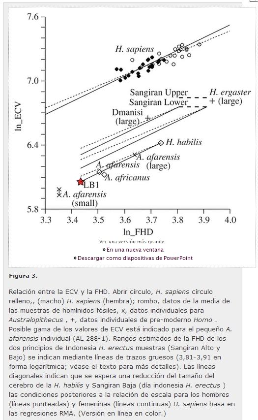 Paleorama en Red. Prehistoria y Arqueología en Internet